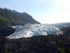 Exit Glacier II